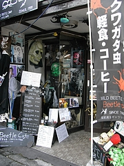 NIKKO Beetle Cafe1