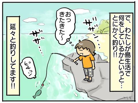 どうぶつの森8