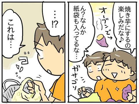 サツマイモ2