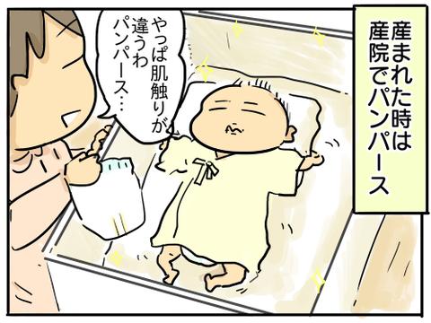 オムツマラソン1
