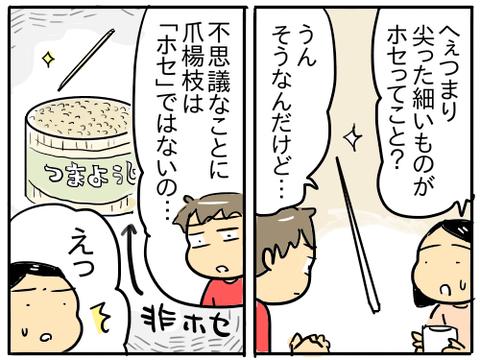 三河弁と筑後弁と福井弁9