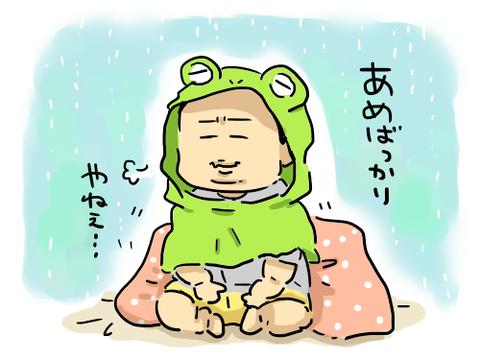 カエルしょうま1