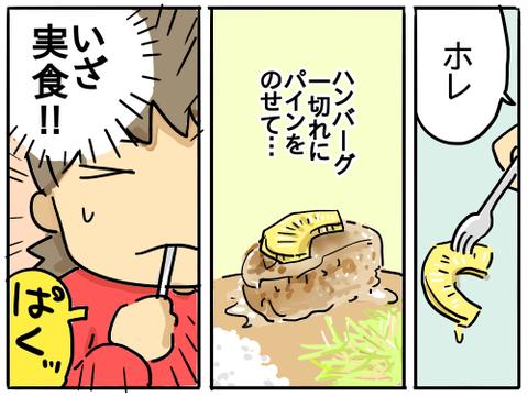 パインハンバーグ7