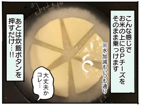 6Pチーズご飯4