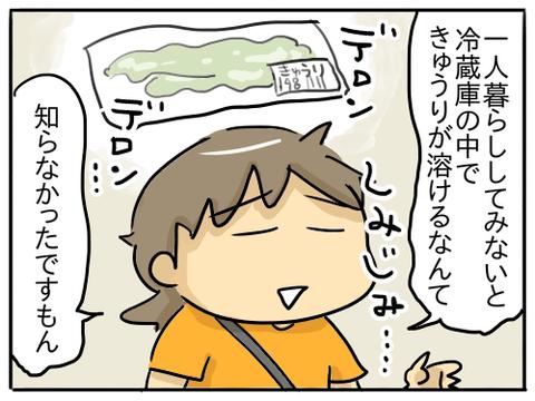 きゅうり3