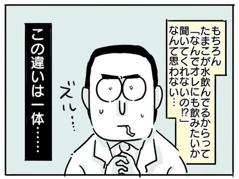 コーヒー問題13