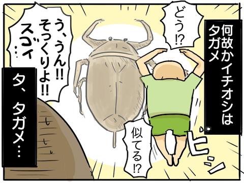 虫捕り少年5