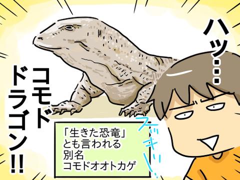 コモドドラゴン3