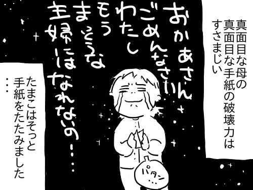 母の感想3