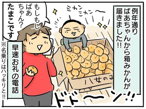 箱みかん1