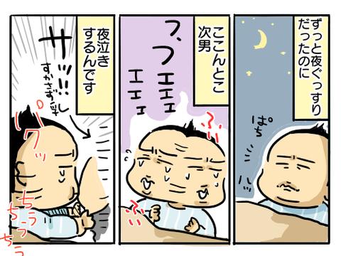 ひやきおーがん1