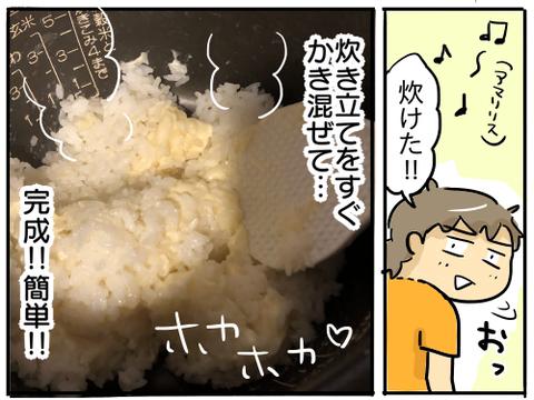 6Pチーズご飯5