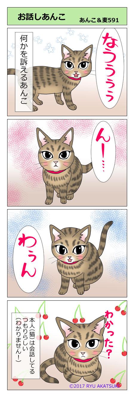 あんこ&麦STORY591