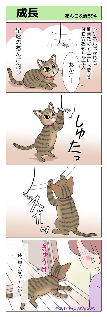 あんこ&麦STORY594