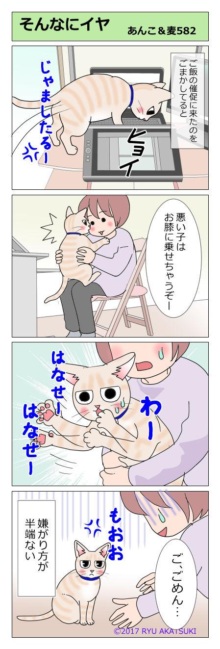 あんこ&麦STORY582