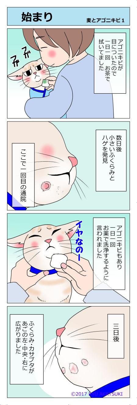 あんこ&麦kenko09