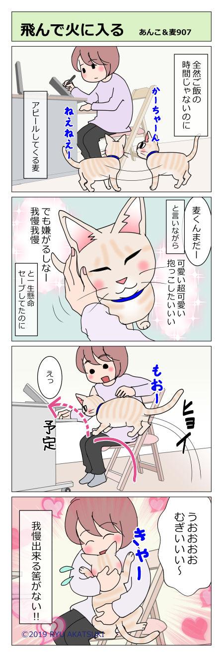 あんこ&麦STORY907