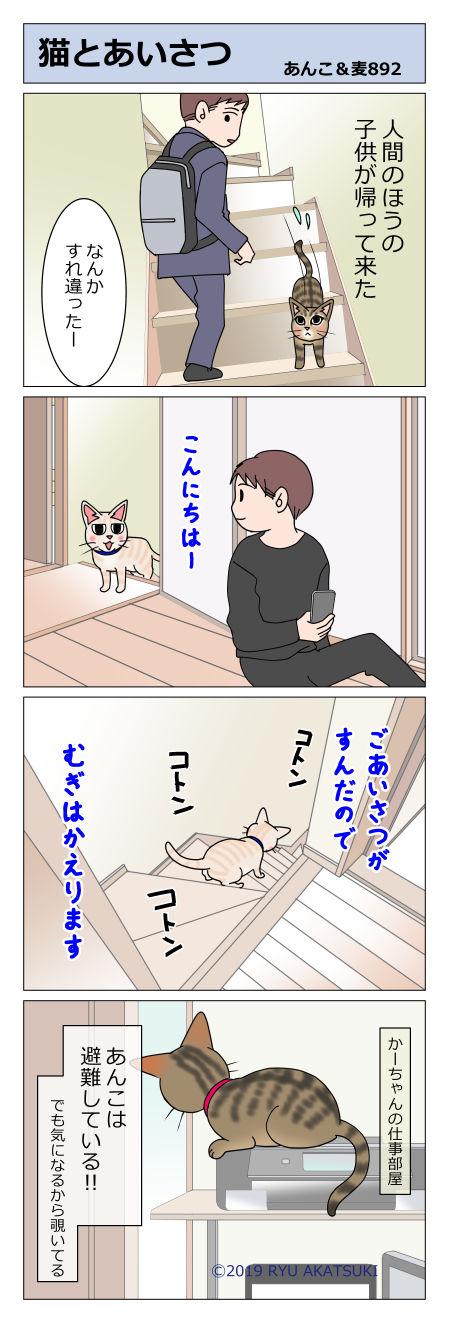 あんこ&麦STORY892