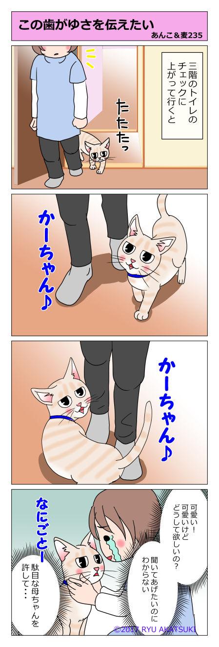 あんこ&麦STORY235