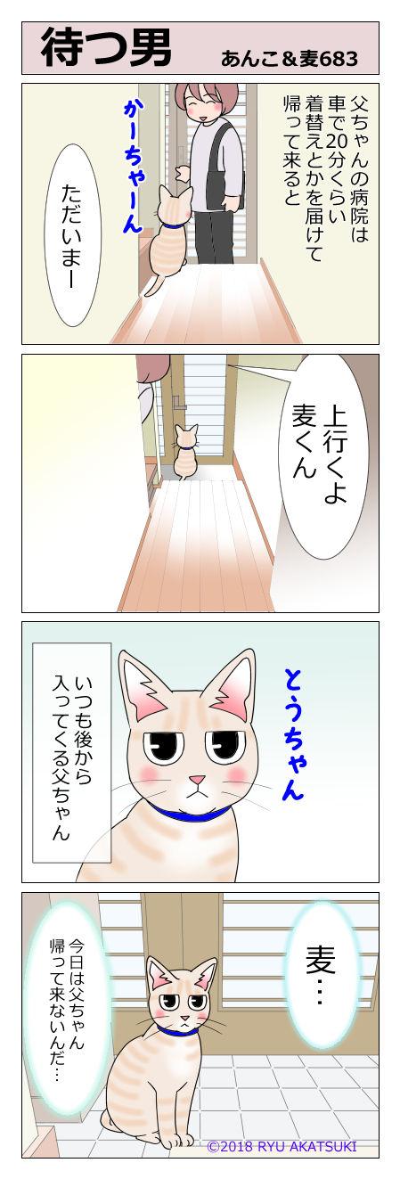 あんこ&麦STORY683