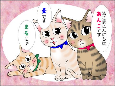 あんこ&麦STORY1428a