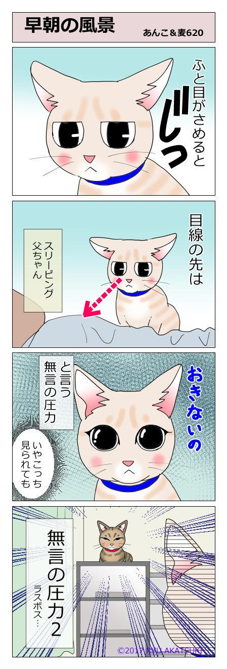 あんこ&麦STORY620