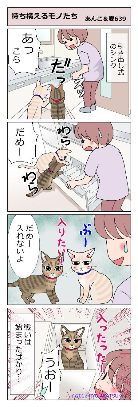 あんこ&麦STORY639