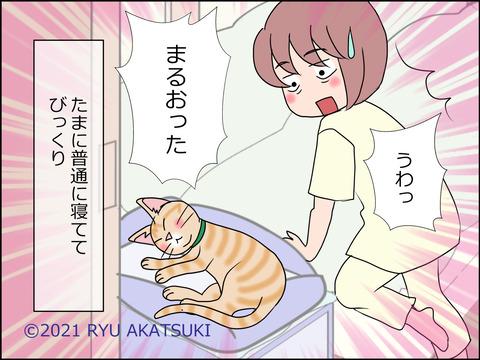 あんこ&麦STORY1441d