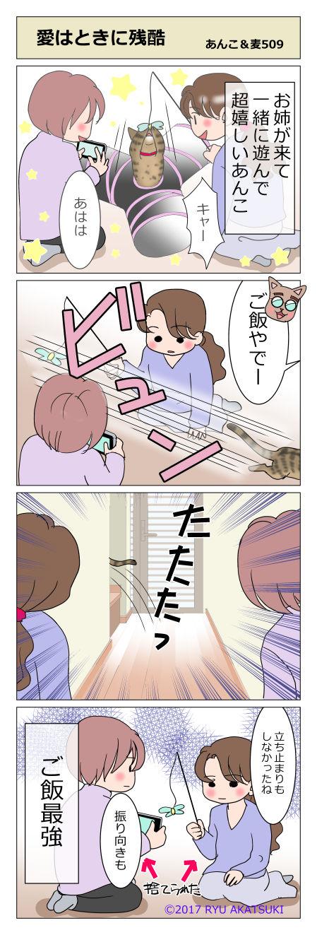 あんこ&麦STORY509