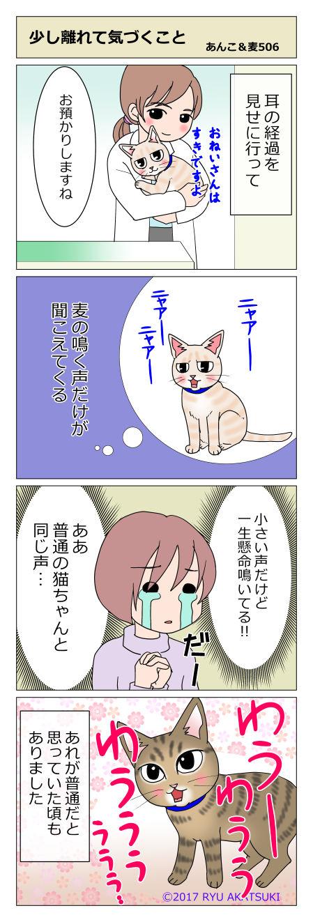 あんこ&麦STORY506