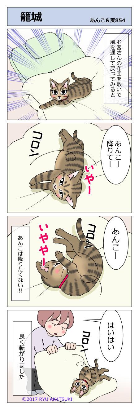 あんこ&麦STORY854