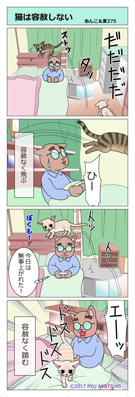 あんこ&麦STORY275