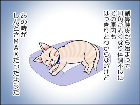 あんこ&麦kenko32b