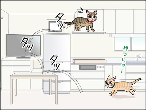 あんこ&麦STORY1438c