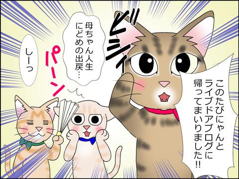 あんこ&麦STORY1428b