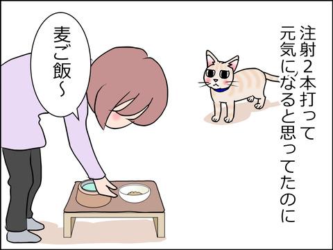 あんこ&麦kenko27a