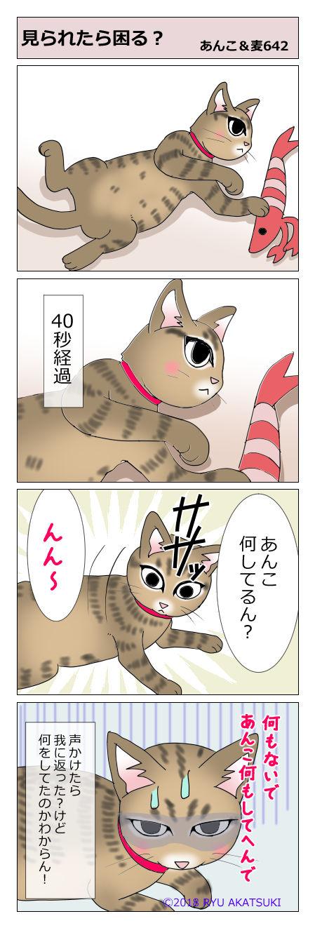 あんこ&麦STORY642