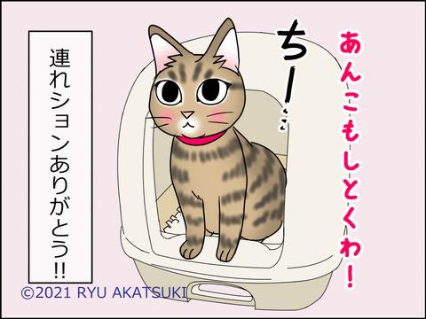あんこ&麦kenko29d