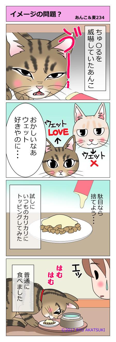 あんこ&麦STORY234