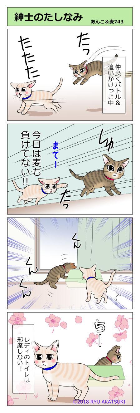 あんこ&麦STORY743