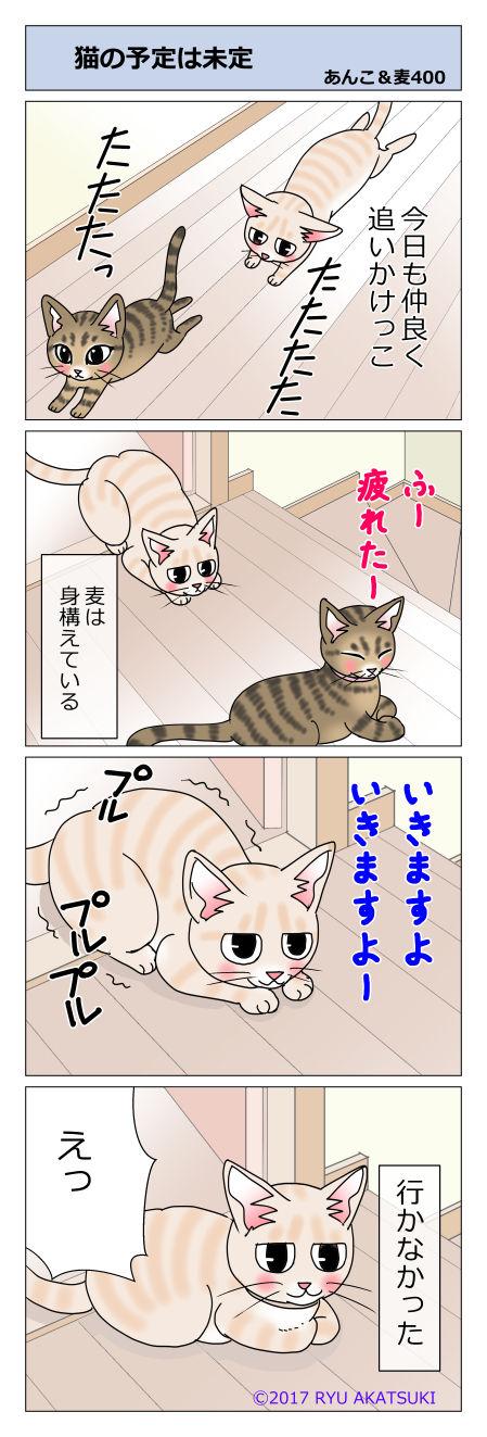 あんこ&麦STORY400