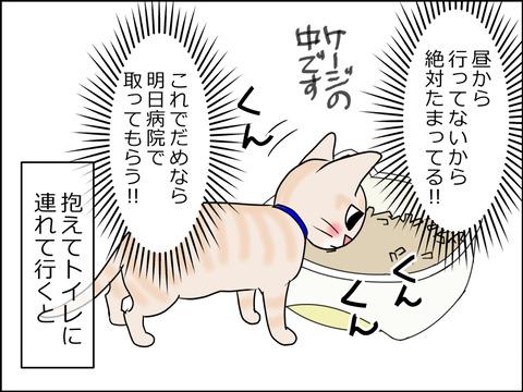 あんこ&麦kenko29b