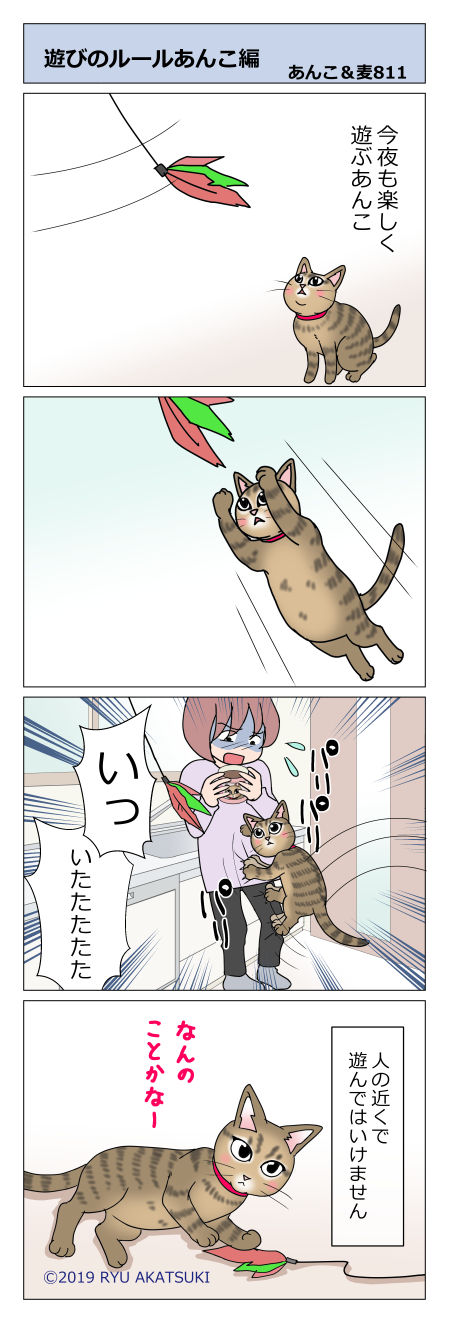 あんこ&麦STORY811