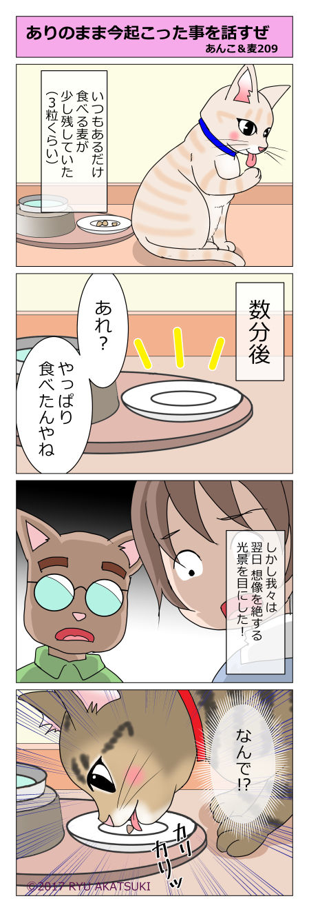 あんこ&麦STORY209