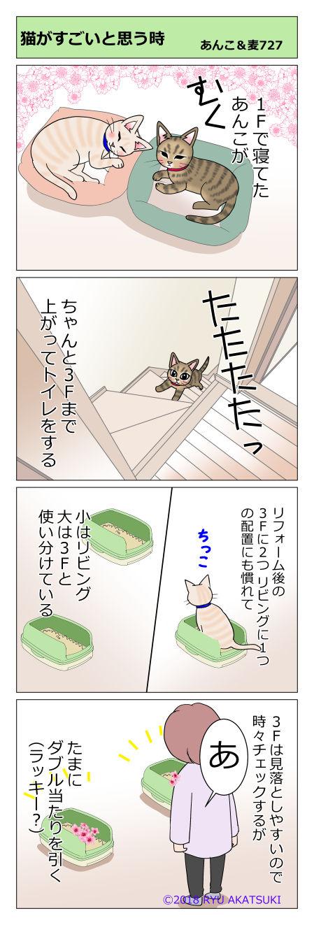 あんこ&麦STORY727