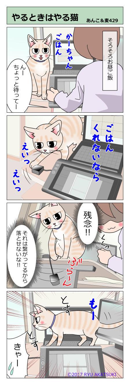 あんこ&麦STORY429