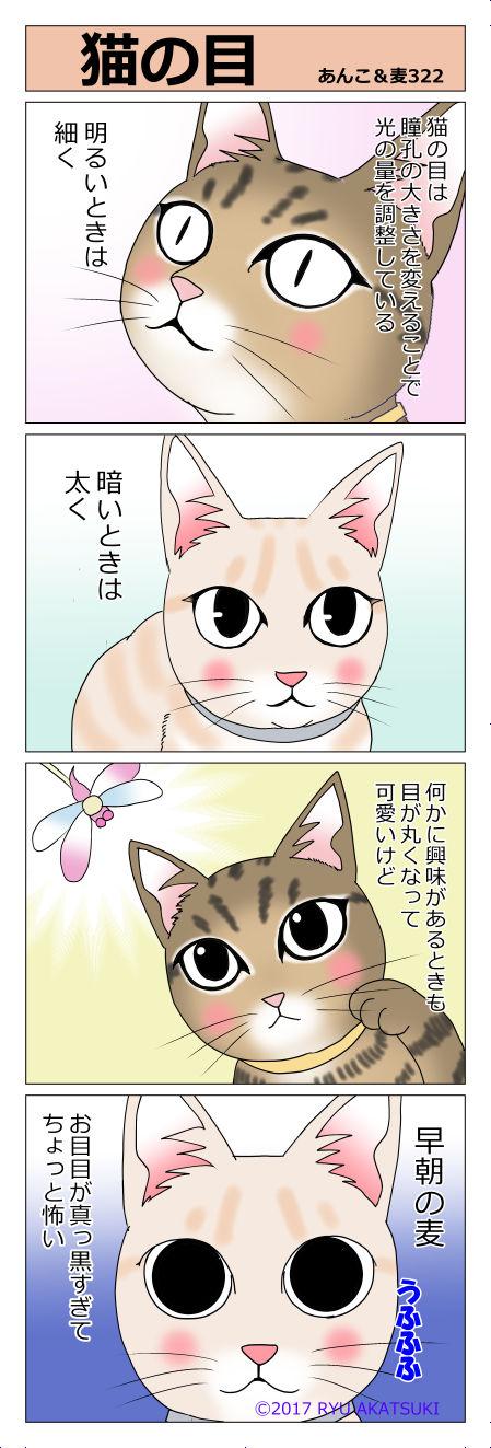 あんこ&麦STORY322