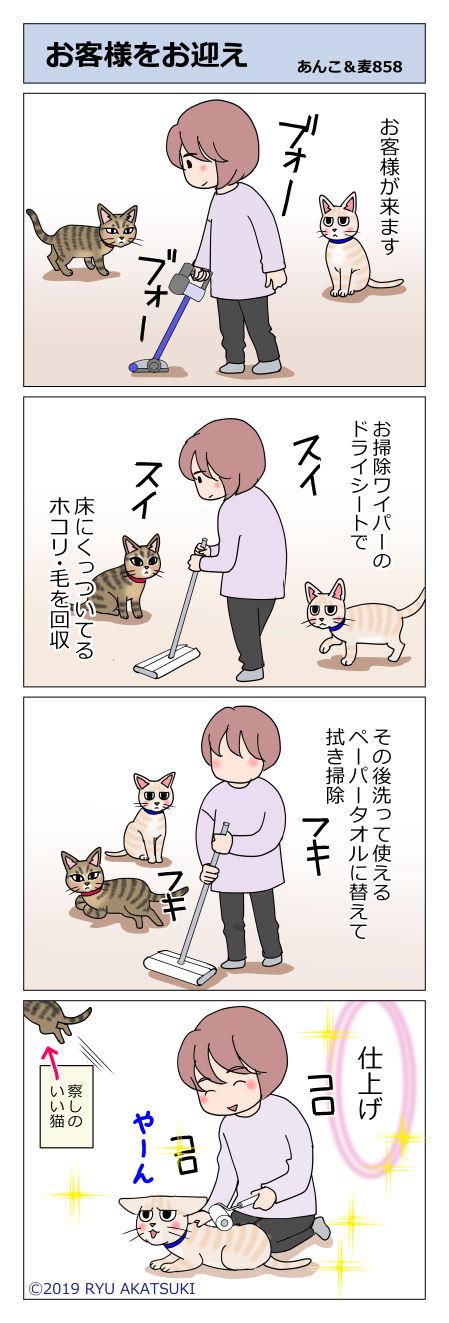 あんこ&麦STORY858