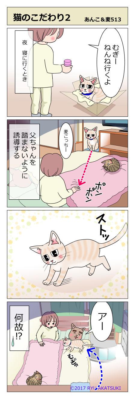 あんこ&麦STORY513