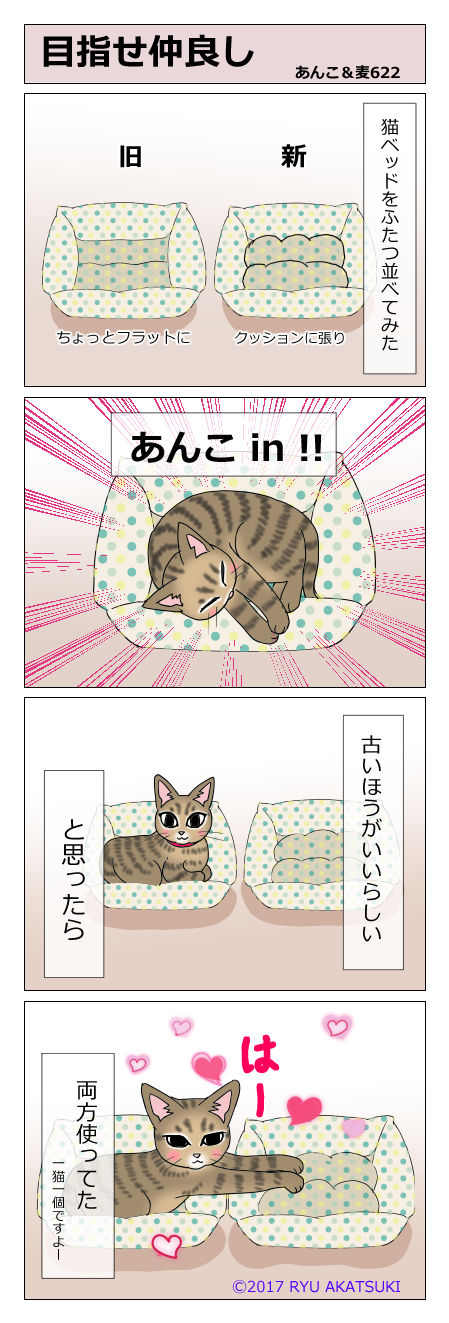 あんこ&麦STORY622